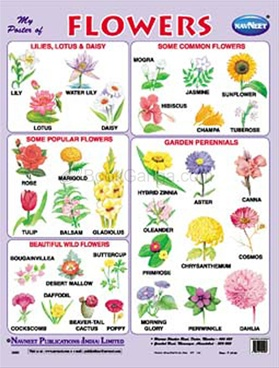 List of national flowers  Simple English Wikipedia the
